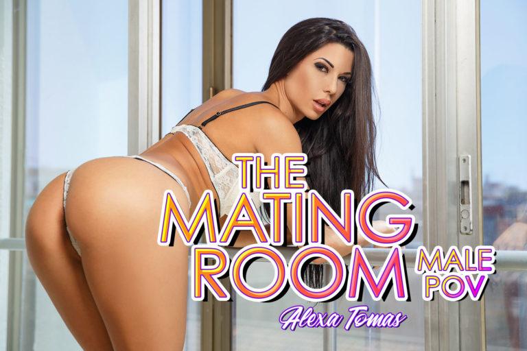BaDoinkVR - The Mating Room - Male POV