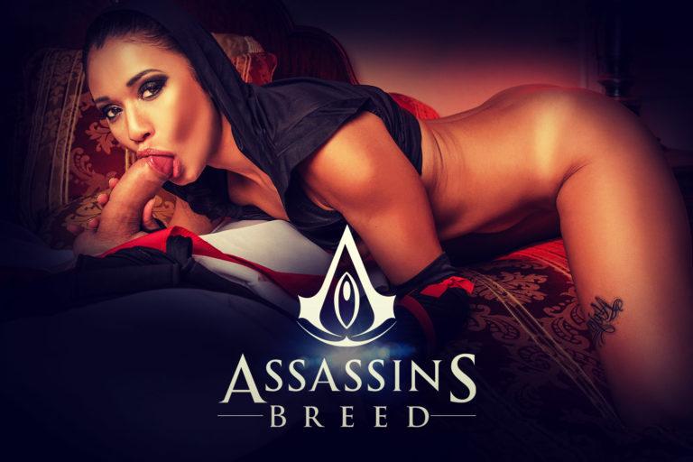 VRCosplayX - Assassins Breed