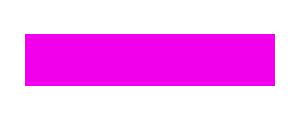 CzechVRCasting Logo