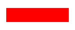 CzechVRFetish Logo