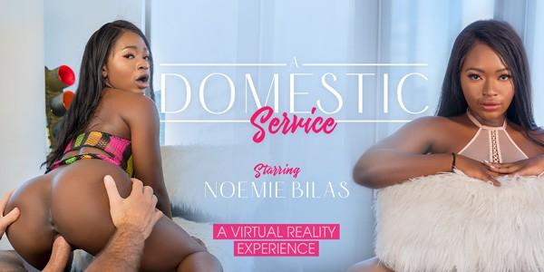 VRBangers - A Domestic Service