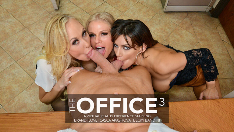 NaughtyAmericaVR - The Office 3