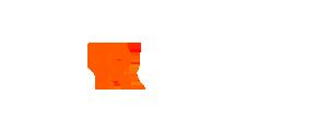 SLROriginals Logo