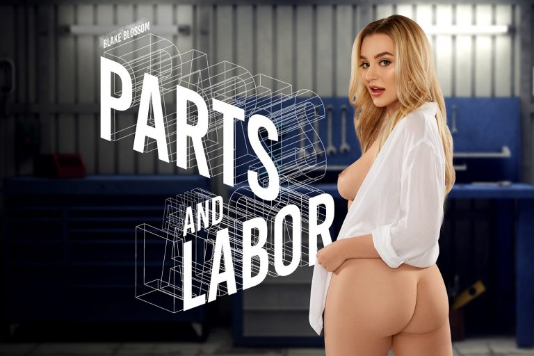 BaDoinkVR - Parts and Labor